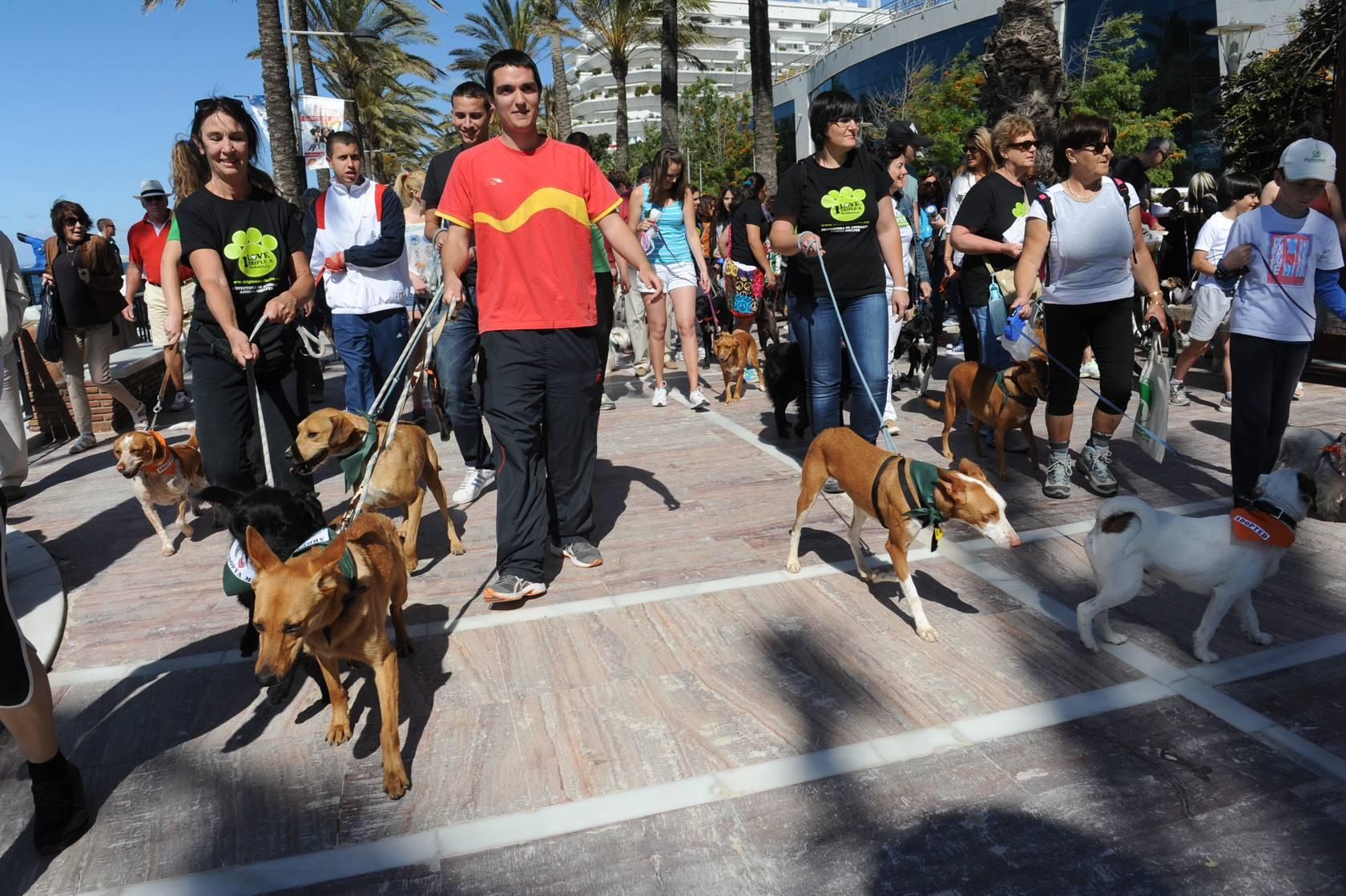 Caminata solidaria de la asociaci&oacute;n Triple A de Marbella