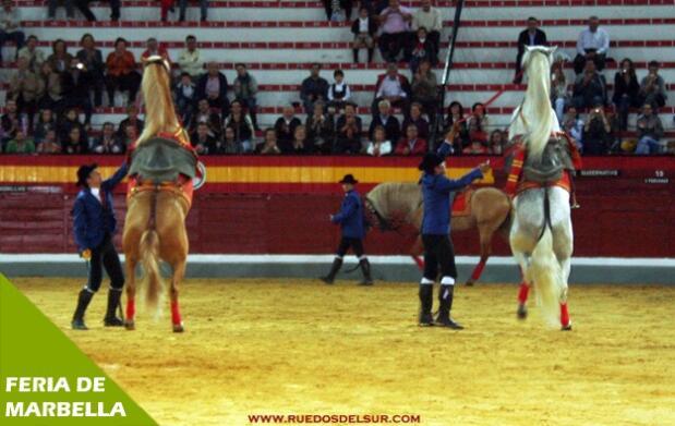 Caballos y flamenco en un espectáculo único