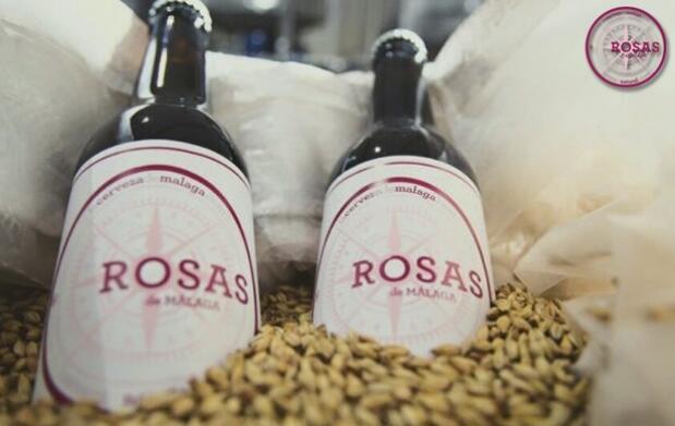 Visita a la fábrica de cerveza artesana con degustación y detalle