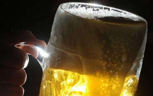 Cata vinos, cervezas y ginebras como un experto