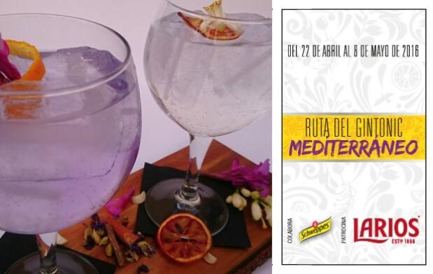2 Gin-Tonics en La Cocotte
