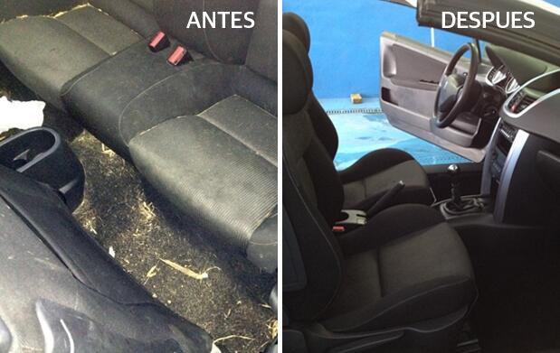 Mantén limpio tu coche a buen precio