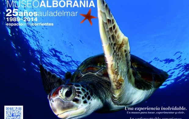 ¡Ven a ver a las tortugas en Alborania!