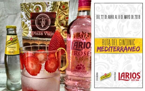 2 Gin-Tonics en Taberna Plaza Vieja
