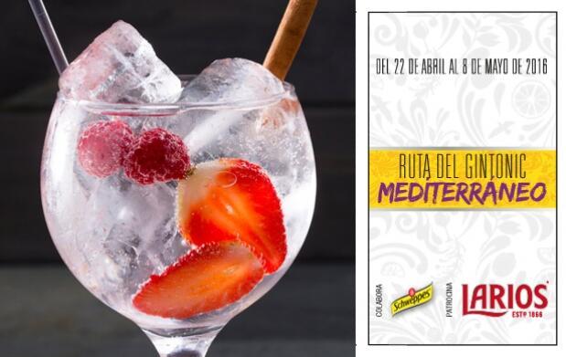 2 Gin-Tonics en Tolone Bar