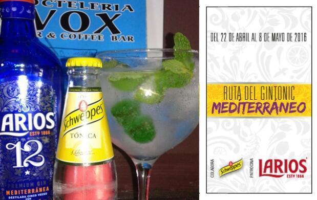 2 Gin-Tonics en Coctelería Vox I