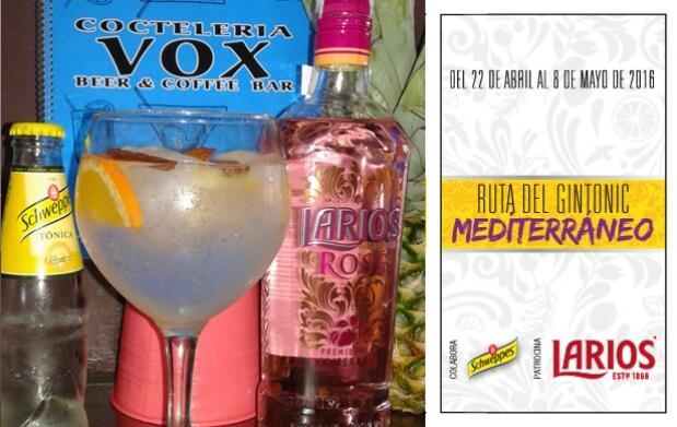 2 Gin-Tonics en Coctelería Vox IV