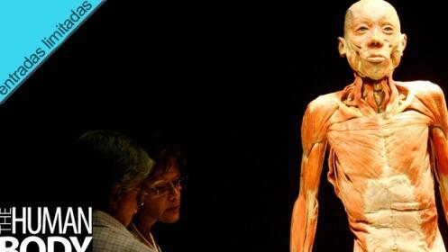 Ven a The Human Body en Marbella