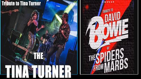 Entrada Tributo Tina Turner y David Bowie – 11 de octubre