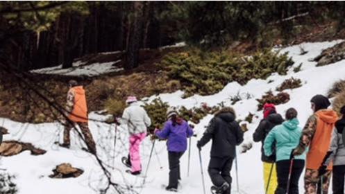 Excursión de 2 horas en Sierra nevada con alquiler de raquetas para una o dos personas